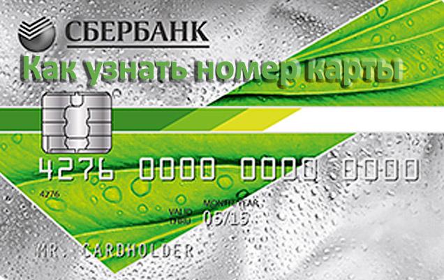 Как узнать номер карты Сбербанка России