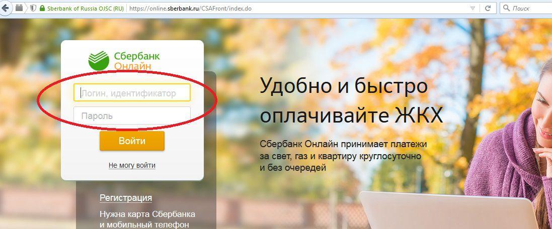 персональный идентификатор и пароль